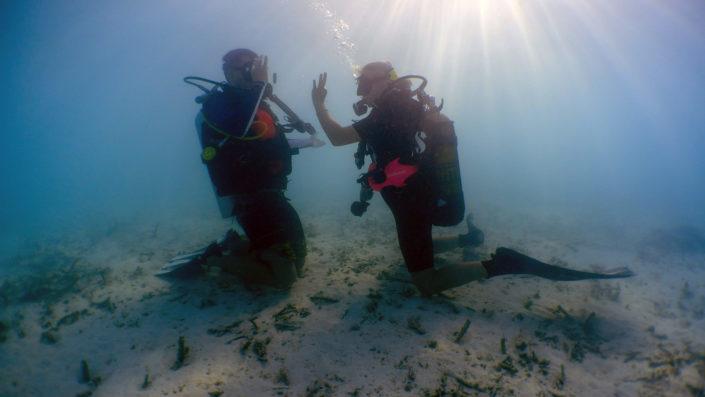 PADI Scuba Diving Maldives