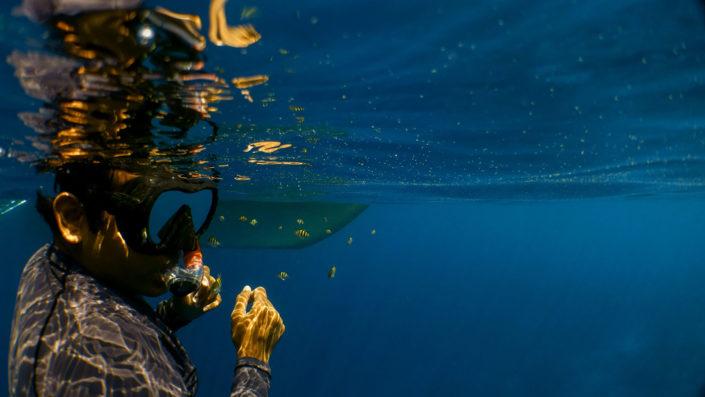 Maldives Excursions snorkelling