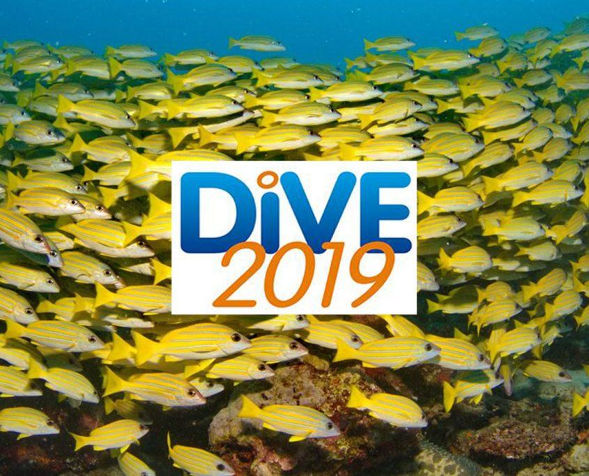 Dive 2019 NEC Show
