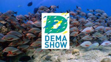 DEMA Show 2019